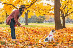 Young woman with dog outdoors in autumn Stock Images