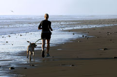 Young woman and dog running. A young woman running on the beach with her dog Royalty Free Stock Photography