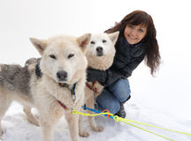 Young woman and dog siberian husky Royalty Free Stock Photo