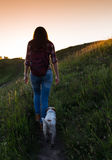 Young woman with dog on a sunny day hiking in high mountains Royalty Free Stock Photography