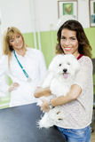 Young woman with dog at veterinarian Royalty Free Stock Image