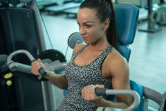 Young Woman Doing Biceps Exercise In Fitness Center Royalty Free Stock Photo