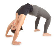 Young Woman doing the Bridge Pose. A young woman is doing the bridge pose Stock Image