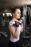 Young woman doing exercises with dumbbells in gym Stock Photography