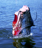 Young woman doing a long hair of water splash in sea Stock Photography