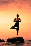 Young Woman doing the Tree Yoga Position During Sunset. Young Woman doing the Tree Yoga Position in Front of the Ocean During Sunset royalty free stock images