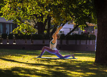 Young woman doing yoga in beautiful morning near lake Stock Photography