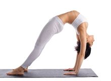 Young woman doing yoga bridge pose isolated Royalty Free Stock Photo