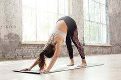 Mindfulness. Woman doing yoga at home on mat in downward-facing dog pose stock photo