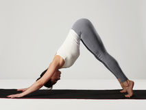 Young woman doing yoga exercises.healthy sport girl. Fashion portrait of young woman doing yoga exercises.healthy sport girl Royalty Free Stock Images