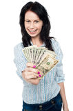Young woman with dollars in her hands Royalty Free Stock Photos