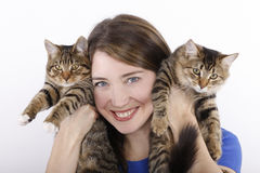 Young woman with domestic cats. Stock Photos