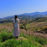 Young woman in dress admiring a Mediterranean landscape,  France Stock Photos