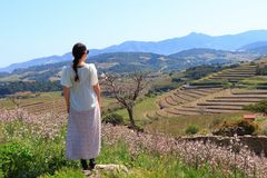 Young woman in dress admiring a Mediterranean landscape,  France Stock Images