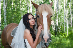 Young woman in the dress of fiancee next to a horse Royalty Free Stock Images