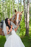 Young woman in the dress of fiancee next to a horse Royalty Free Stock Image