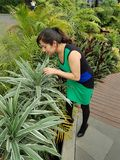 young woman with dress observing and touching the leaves of a plant Royalty Free Stock Image
