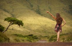 Young woman in dress with raised hand neare single tree on the road royalty free stock image