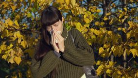 Portrait of a young woman in a knitted sweater on a background of yellowed trees stock video