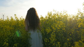 Young woman dressed in white walking and touching plants in canola field on warm summer day. Young woman dressed in white walking and touching plants in canola stock video footage