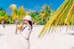 Young woman drinking coconut milk on hot day on the beach. Young woman drinking coconut milk during tropical vacation between palm trees royalty free stock image