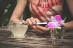 Young woman drinking tea and using her phone Stock Image