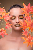 The young woman with dry autumn leaves. Young woman with dry autumn leaves stock images