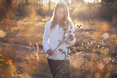 Young woman with dry flowers Royalty Free Stock Image