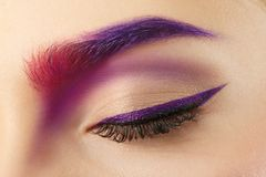 Young woman with dyed eyebrow,. Closeup stock image
