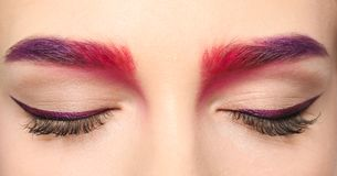 Young woman with dyed eyebrows,. Closeup royalty free stock photography