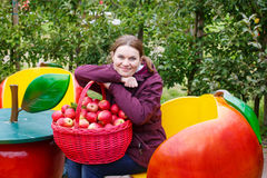 Young woman eating red apples in an orchard Royalty Free Stock Image