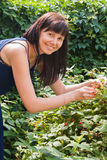 A young woman eats berries raspberry in a garden Royalty Free Stock Images