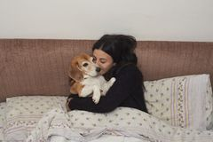 Young woman embraces her Beagle dog stock photos