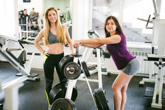 Young woman is engaged fitness in gym Royalty Free Stock Image