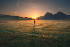 Girl standing on golden field towards the rising sun. Young woman enjoying the beautiful illuminated nature, while watching idyllic sunrise in Dolomites royalty free stock images