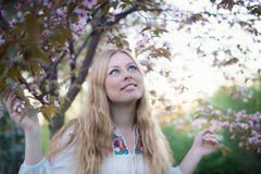 Young woman is enjoying evening by the cherry tree Royalty Free Stock Images