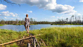 Young woman enjoying nature. On boardwalk in the swamp with photo camera in sunny day Stock Image