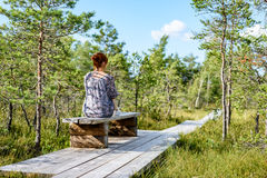 Young woman enjoying nature. On boardwalk in the swamp with photo camera in sunny day Stock Photography