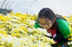 Girl in the flower garden Royalty Free Stock Photo