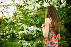 Young woman enjoying spring blossom Stock Photo