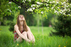 Young woman enjoying spring blossom Royalty Free Stock Photography