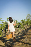 Young Woman Enjoying A Walk and Wine in Vineyard. Young Mixed Race Woman Enjoying A Walk and a Glass of Wine in the Vineyard Stock Images