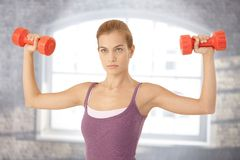 Young woman exercising with dumbbells. Concentrating royalty free stock photo