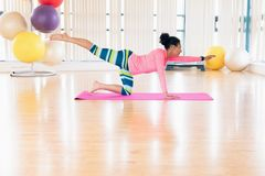 Woman exercising in the gym. Young woman exercising in the gym Royalty Free Stock Photo