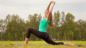 Young Woman Exercising in a Meadow stock video footage