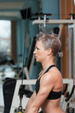 Young Woman Exercising Triceps In Healthy Club Royalty Free Stock Image