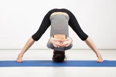 Young woman exercising yoga Royalty Free Stock Photos