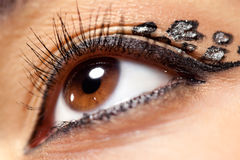 Young woman eye closeup Royalty Free Stock Image