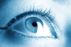 Young woman eye closeup Royalty Free Stock Photos