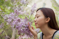 Young woman with eyes closed smelling a flower blossom in the park in springtime Stock Image